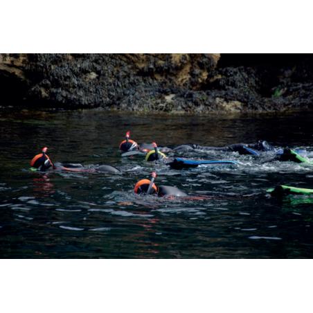 ©Sellor - Snorkeling sur le littoral