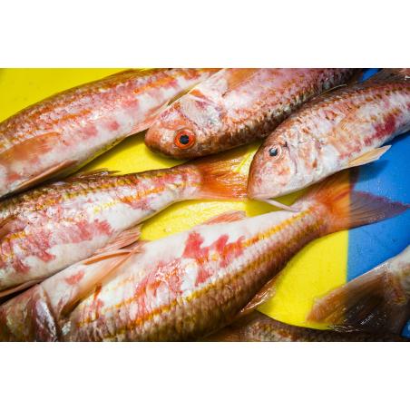 ©Xavier Dubois-LBST - La pêche de Keroman