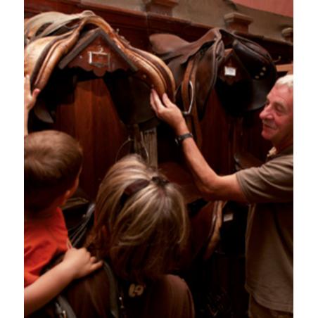 ©TDRX Sellor - Visite du Haras National d'Hennebont