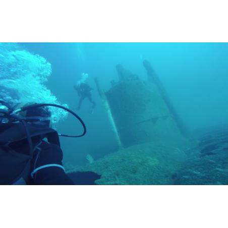 ©Sellor - Plongée sous-marine