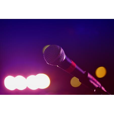 ©Pixabay - Cours de chant