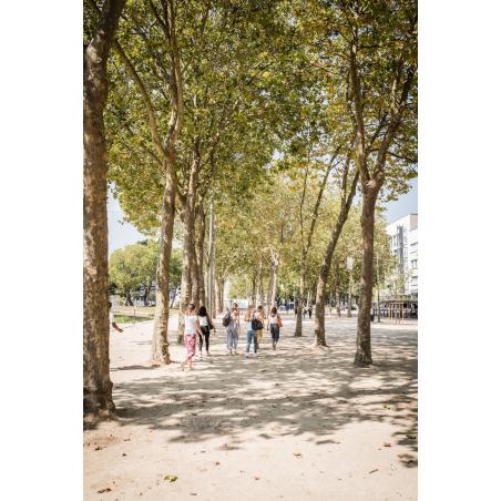 ©Xavier Dubois-LBST  - La rambla en centre-ville