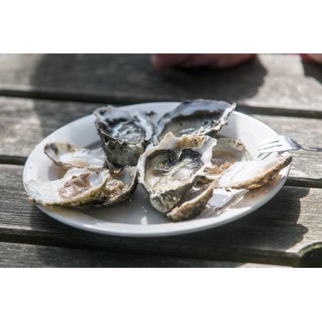 ©QTO - Les Huîtrières du Château de Belon - Dégustation d'huîtres du Belon